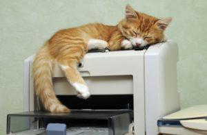 Принтер быстро уходит в спящий режим - что делать?
